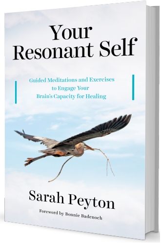 Your Resonant Self: The Book | Guided Meditations and